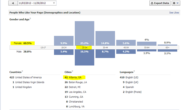 Facebook Business Page Insights