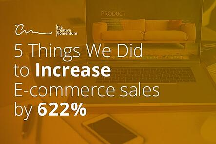 5 Things We Did to Increase E-commerce Sales by 622%