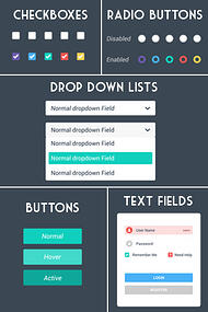 Website UI Design Elements - Input controls such as dropdown lists, checkboxes, radio buttons collect information from users