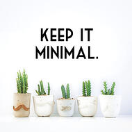 Small cacti in bowl vases - keep website design simple for optimal responsive design